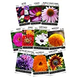 Sow Right Seeds Flower Garden Collection - Sunflower, Marigold, Zinnia, Cosmos, Daisy, Calendula, Coneflower, Bachelor Button, and Aster; Full Instructions for Planting, Wonderful Gardening Gifts