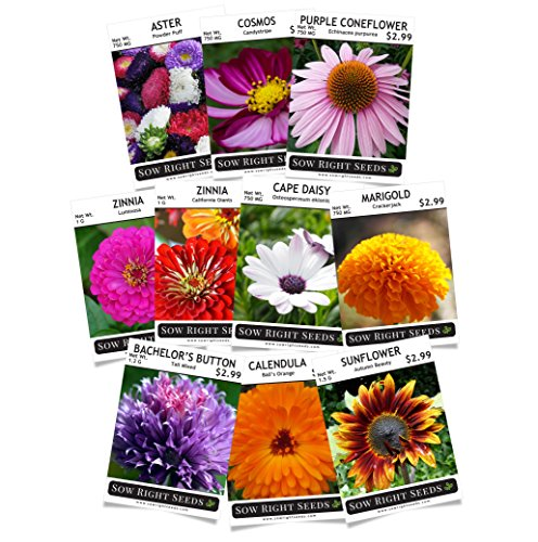 Sow Right Seeds Flower Garden Collection - Sunflower, Marigold, Zinnia, Cosmos, Daisy, Calendula, Coneflower, Bachelor Button, and Aster; Full Instructions for Planting, Wonderful Gardening Gifts by Right Hardware