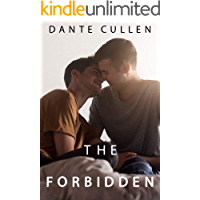 The Forbidden: A Gay Young Adult Romance (English