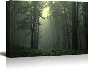 """Canvas Prints Wall Art - Beautiful Beam of Light in a Natural Foggy Green Forest 