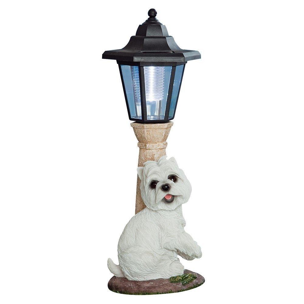 Bits and Pieces Bit e pezzi – Lanterna solare Westie – Illuminazione per esterni e giardino – Scultura cane in resina con luce LED