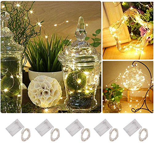 Ruixunte 5PCS 40 LED 4M Warm White Mini Micro Seed Submersible Fairy Lights Copper (Mini Bouquet Seed)