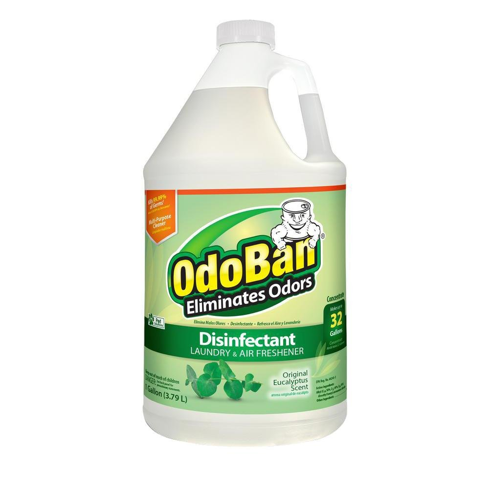 OdoBan Concentrate Disinfectant Laundry and Air Freshener Eucalyptus Scent 4 Gallons by OdoBan (Image #3)