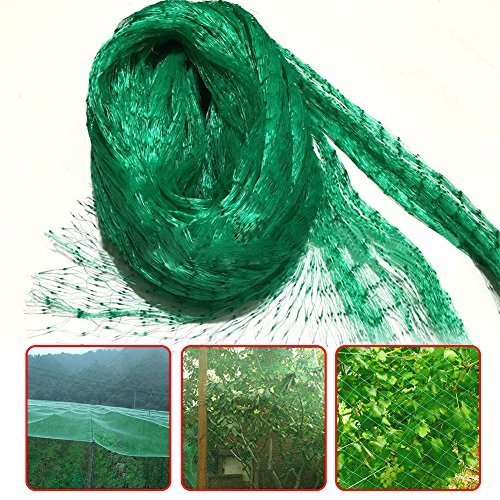 fc0397244a67 Caiyuangg Anti Bird Net,13Ft x 33Ft Garden Plant Netting Protect for Birds  Fencing Mesh Bird Netting for Vegetables, Flowers, Fruits from Rodents ...