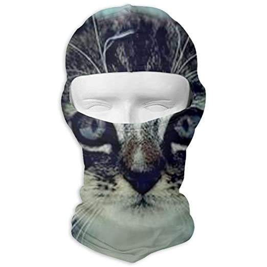 Balaclava Cats And Kittens Full Face Masks Motorcycle Neck Hood ... 555f067b65