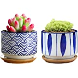 GeLive Japanese Ceramic Succulent Planter, Cactus Plant Pot, Flower Container with Bamboo Drip Tray, Set of 2 (Wave and…