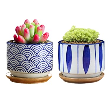 GeLive Japanese Ceramic Succulent Planter, Cactus Plant Pot, Flower Container with Bamboo Drip Tray, Set of 2, Blue Flower and Wave Pattern