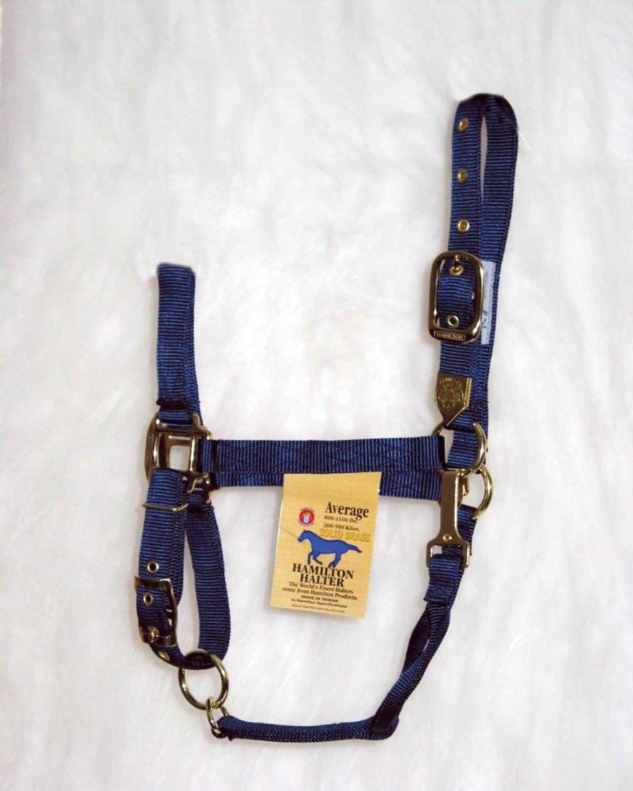 DPD Adjustable Chin Horse Halter with SNAP - Average - Navy