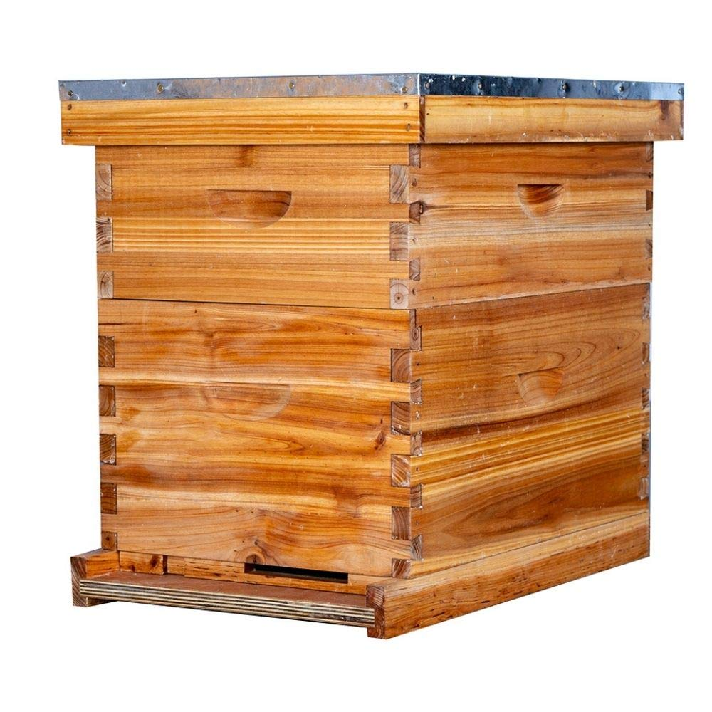 Beehive 8 Deep and 8 Medium Frames Langstroth Wax Coated Beehive Kit for Beginners and Pro Beekeepers Bee Hives for Sale Includes Wooden Frames & Waxed Foundations (2 Layers)