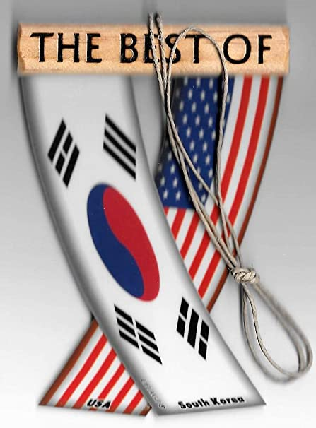 UNITY FLAGZ South Korea and USA Korean American Asian Flag Rear View Mirror Hanging CAR Flags Mini Banners for Inside The CAR