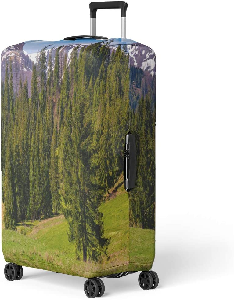 Pinbeam Luggage Cover Spruce Forest on Grassy Hill in Spring Beautiful Travel Suitcase Cover Protector Baggage Case Fits 22-24 inches
