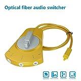 Topoint Toslink Splitter Switcher, 3X1 Digital Optical Fiber Audio Bi-Directional Manual Selector Switcher (Golden Silver)