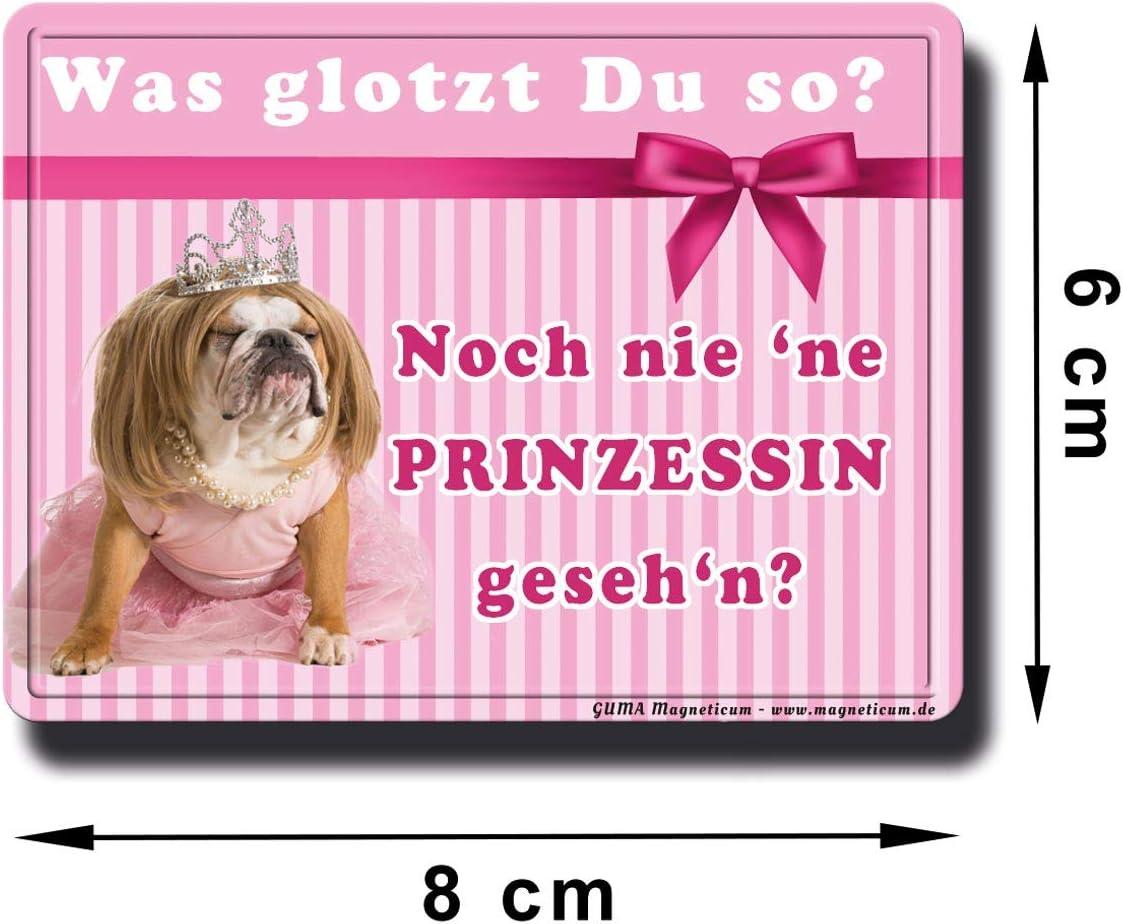 Hund Kühlschrankmagnet Magnet Flaschenöffner King Charles Dackel