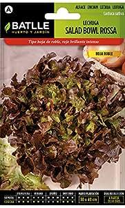 Semillas Hortícolas - Lechuga Salad Bowl Roja - Batlle