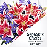 ProFlowers - Birthday Grower's Choice with FREE Chocolates (with FREE glass vase) - Flowers