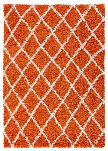 Diagona Designs Era Collection Contemporary Moroccan Trellis Design Shag Area Rug, 5' W x 7' L, Orange / Ivory