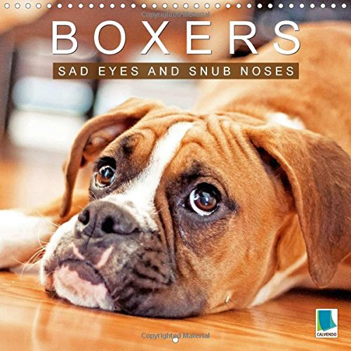 Boxers Sad eyes and snub noses 2016: Boxers - Pets with character (Calvendo Animals) PDF
