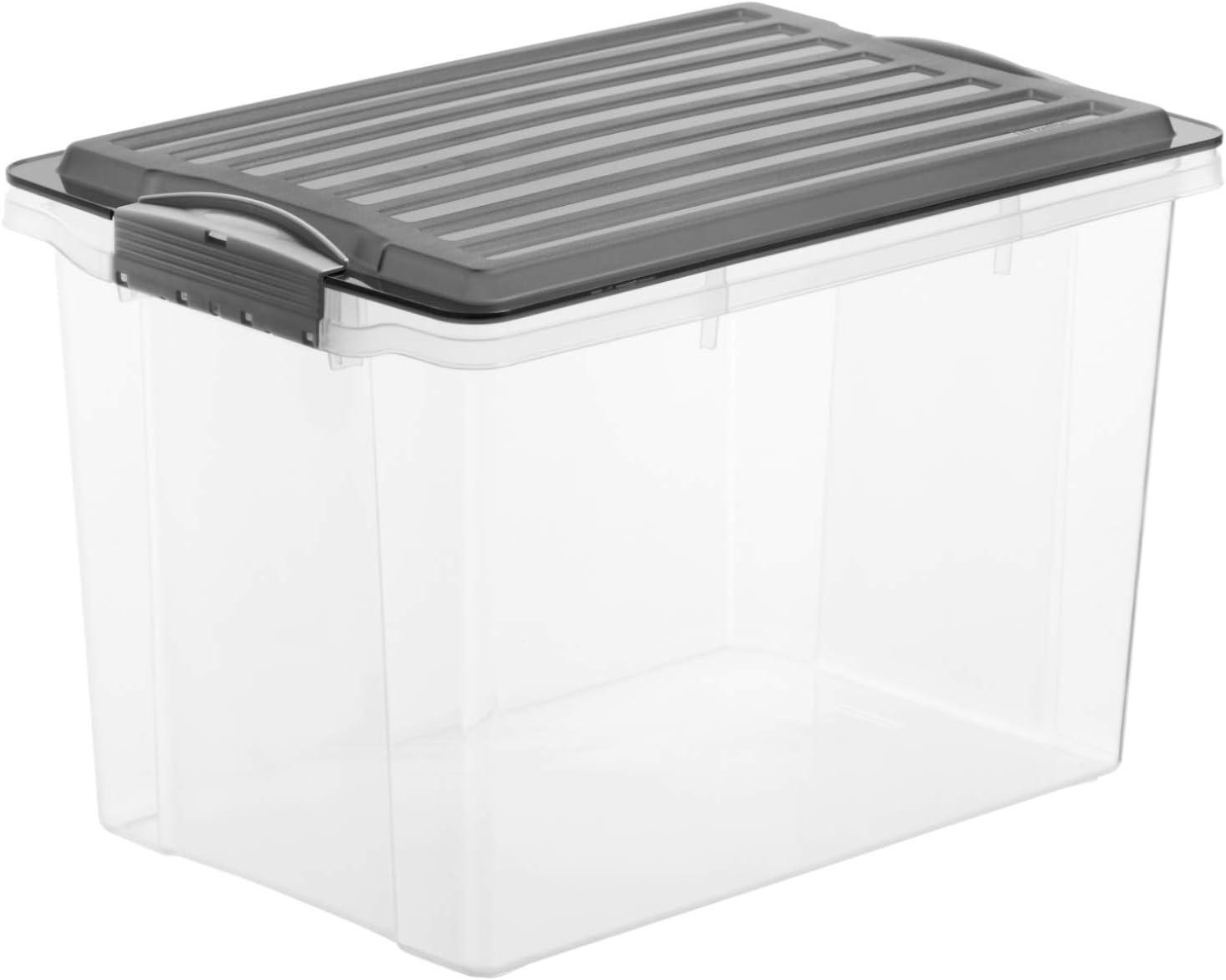 Rotho–Caja para Guardar Compact Transparente con Tapa, plástico, Transparente y Gris, A4 Hoch / 19 l