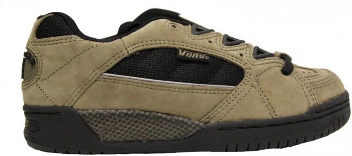 Vans Skateboard Shoes santos Quarry