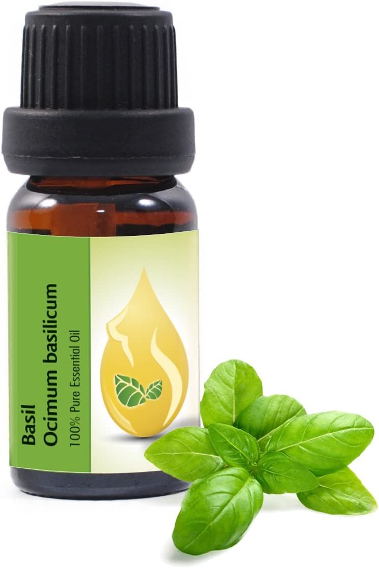 Albahaca (Ocimum basilicum) - Aceite esencial, 100% puro, sin diluir, grado terapéutico (10ml)