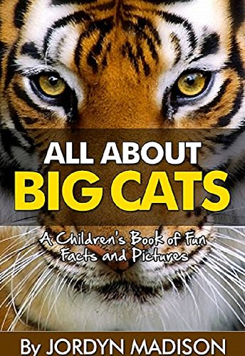 All About Big Cats   Lions, Tigers, Jaguars, Cheetahs, Leopards And More