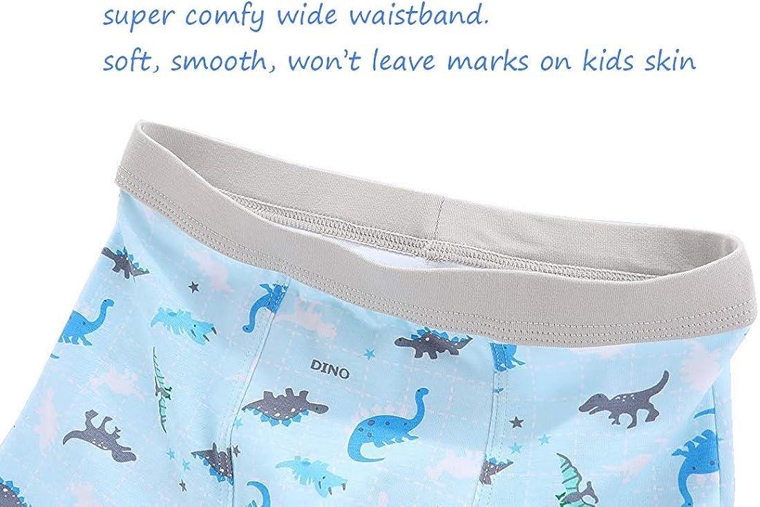 CHUNG Toddler Little Boys Underwear Soft Modal Cotton Boxer Briefs Pack of 5//10 Dinosaur 2-9Y