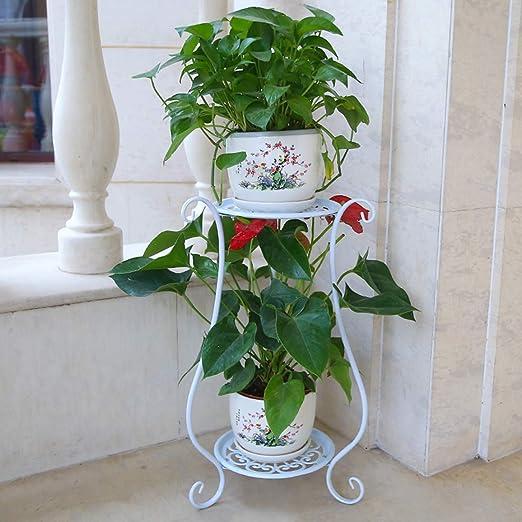 JKL-Soportes para Plantas Soporte para Plantas Soporte de Flores ...