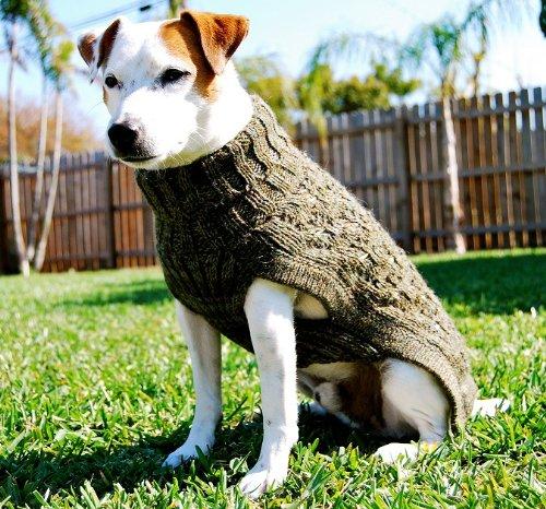 Alpaca Wool Hand made ''Pichasqa'' Dog Sweater Size:Medium