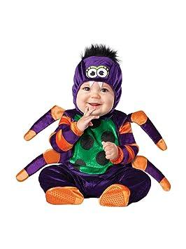 In Character - Disfraz para bebé de araña, Talla 18 Meses - 2 años