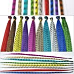 Feather Hair Extension Kit with Synthetic Feathers 100 Beads Plier and
