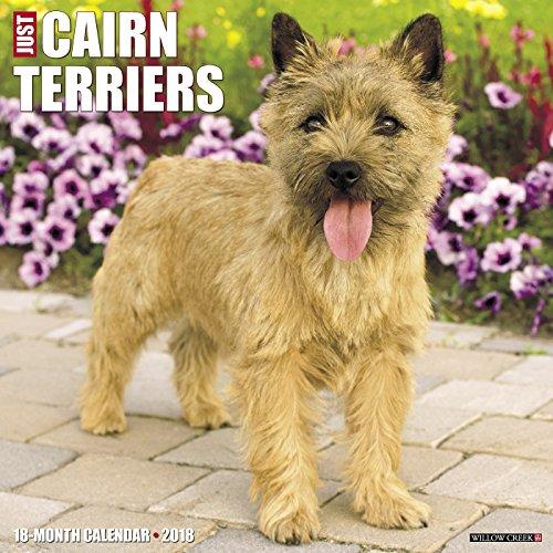 Just Cairn Terriers 2018 Wall Calendar (Dog Breed Calendar)