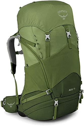 Osprey Ace 75 Kid s Backpacking Backpack, Venture Green