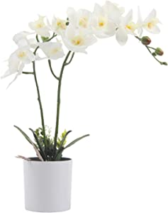Pauwer Artificial Orchid Flowers in Vase Silk Fake Phalaenopsis Orchid Flower Arrangement White Faux Orchid Potted Plants Bonsai for Home Table Party Wedding Decor