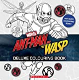 Ant-Man and the Wasp Colouring Storybook