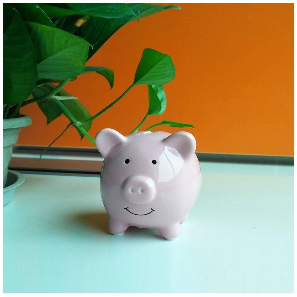 Geelyda Pink Piggy Bank Small Piggy Banks for Girls Boys Kids Piggy Banks A New Piggy Banks for Gift