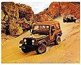 1979 Jeep CJ5 Golden Eagle Factory Photo