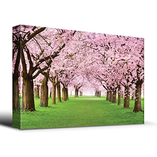 Cherry Pictures Blossom (wall26 Cherry Blossoms line path - Canvas Art Home Decor - 24x36 inches)