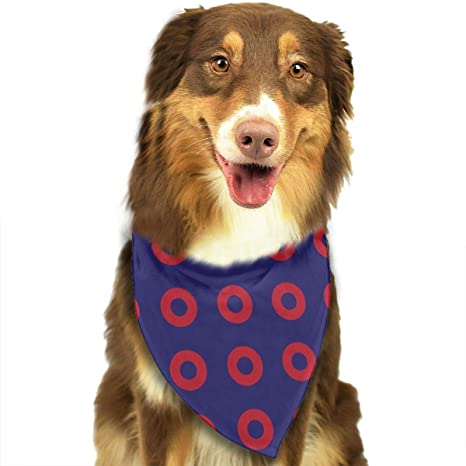Amazon.com: Fengyijiating - Bandana para perro, disfraz de ...