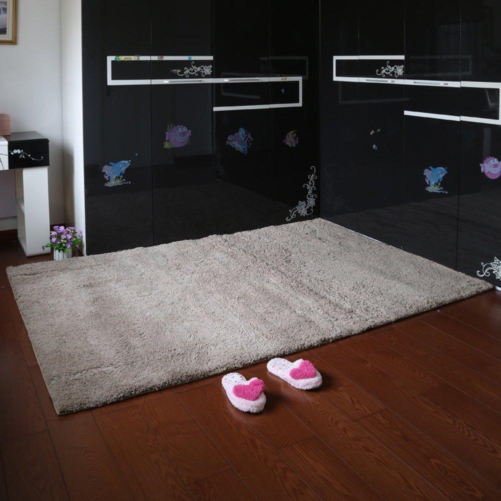 Garden mats Thick mats Living room bedroom bathroom water-absorbing mat-C 160x230cm(63x91inch)