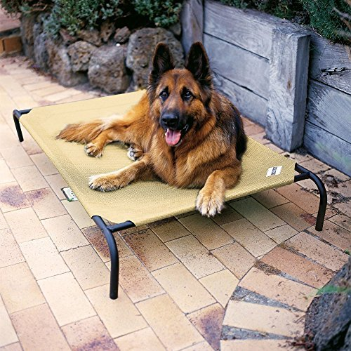 Coolaroo Elevated Pet Bed - Coolaroo Deluxe Dog Bed - DESERT SAND EXTRA LARGE
