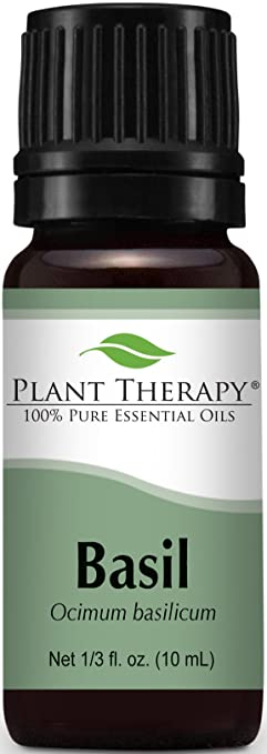 Plant Therapy Basil Essential Oil