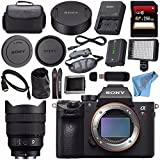 Sony ILCE7RM3/B Alpha a7R III Mirrorless Digital Camera (Body Only) FE 12-24mm f/4 G Lens SEL1224G + 256GB SDXC Card + Professional 160 LED Video Light Studio Series + Micro HDMI Cable Bundle