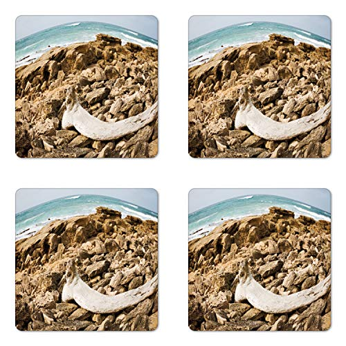 Lunarable Driftwood Coaster Set of 4, South Africa Tranquil Seaside View on Beach Rocks, Square Hardboard Gloss Coasters, Standard Size, Tan Sand Brown (South Patio Set Africa)