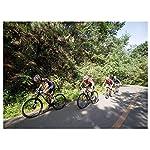 26-Pollici-21-velocit-Adulto-Bicicletta-MTB-Bicicletta-Bicicletta-Mountain-Bike-Biciclette-Doppio-Freno-A-Disco-Acciaio-Alto-Tenore-Carbonio-TelaioWhite-Red