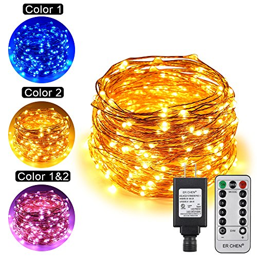 Dual Color Led Light String in Florida - 2