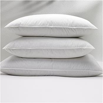 Amazon Com W Hotels King Feather And Down Pillow Home