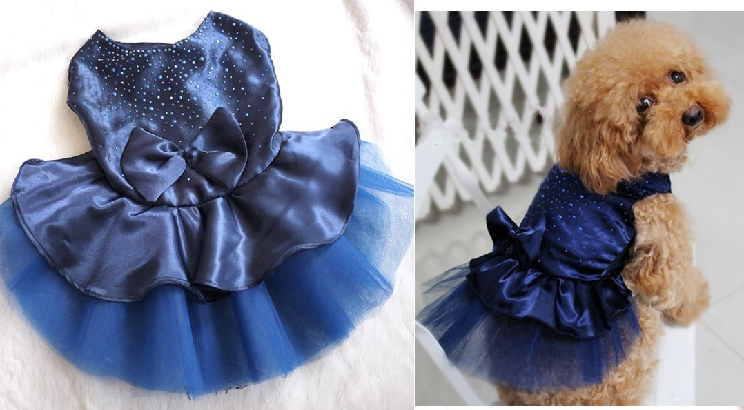 Royal Blue Large Royal Blue Large Special Occasions / Formal Wear Small Dog Dress (Royal Blue, Large)