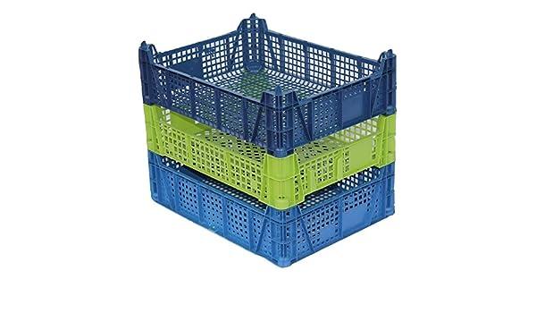 3 x caja de fruta y verdura, Champiñón Caja, Verde, apilable, 29 x 39 x 11 cm, tarro Caja, caja de transporte: Amazon.es: Hogar