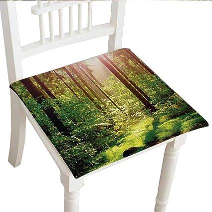 Stupendous Amazon Com Classic Decorative Chair Pad 32X32X2Pcs Pabps2019 Chair Design Images Pabps2019Com