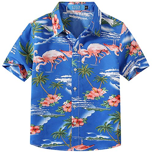 SSLR Big Boy's Flamingos Button Down Short Sleeve Aloha Hawaiian Shirt (X-Large(18-20), Sapphire Blue) Boys Blue Ss Shirt Top